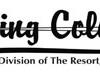 flying-colors-logo